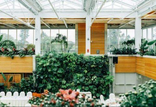 Best Indoor Greenhouse