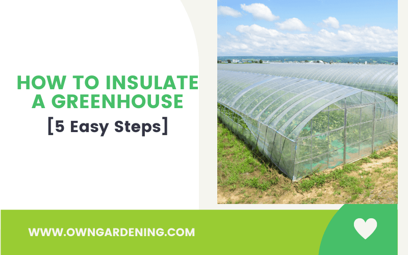 How to Insulate a Greenhouse-min